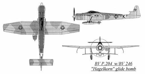 BV P.204.jpg