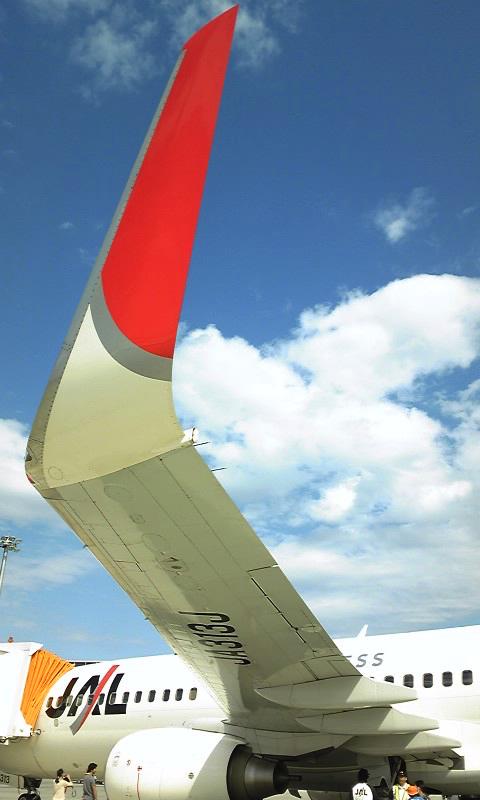 JAL_Express_Boeing737-800-JA313J-'s_winglet copy.jpg