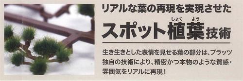 盆栽スポット植葉.jpg