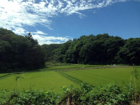 福島4.jpg